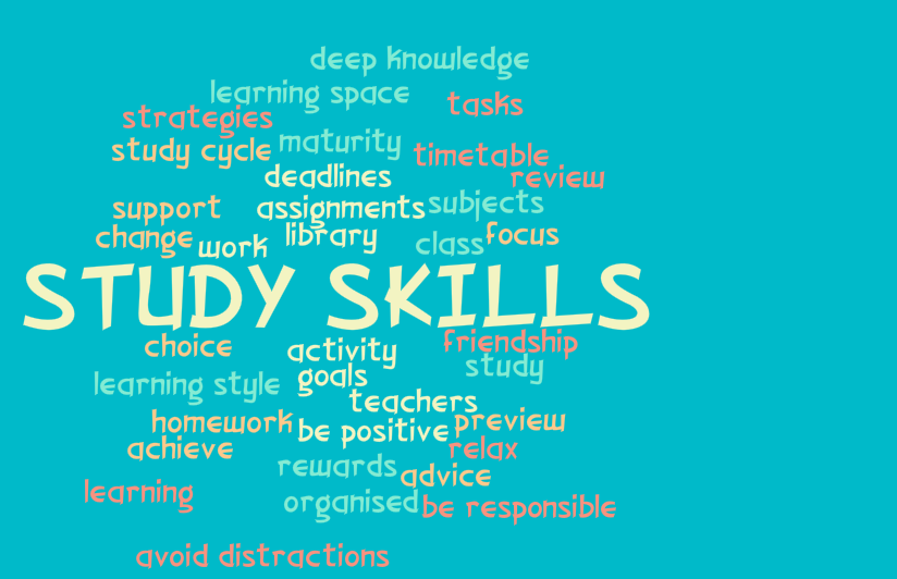 learning skills essays Writing practise and improve your writing skills for your school studies and your english exams there are activities for different levels, so find your level and make a start.