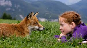 fox and child together
