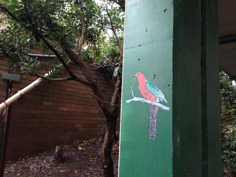 parroting fauna